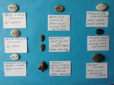 Ancient Orient - China Lot of 10 different pseudo-coins from different materials, Shang, Zhou, 950-220 BC