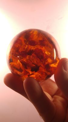 Baltic amber Sphere  Ball, No reserve, 254gr