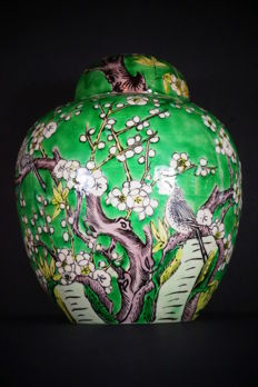 "Large famille verte ""prunus and birds"" covered jar – China – 19th century"