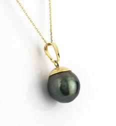 Gold, 18 kt – Choker with pendant – Tahitian pearl – Length: 42 cm (approx.)
