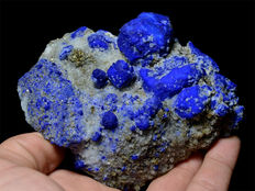 Royal Blue Lazurite Crystals With Pyrite  - 124 x 90 x 50 - 520 gm