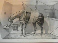 Henry Downes Miles - The Book of Field Sports, and Library of Veterinary Knowledge - approx. 1860