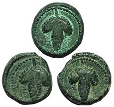 Greek Antiquity - Lot x 3 of AE - Italy Northern Apulia Arpi, c. 215-212 BC - Head Athena / Bunch of grapes - HN Italy 650