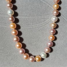 Cultured fresh water pearl necklace,approx 11-12. mm, assorted colours