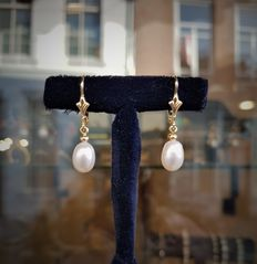 Gold earrings with freshwater pearl