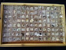 Collection of 112 Micromount mineral specimens  - 994gm (112)
