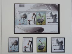 Bird theme - Collection on album sheets in Lindner album with coffer