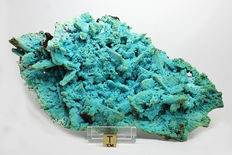 Rare Chrysocolla Pseudomorph after Azurite-Malachite crystals -  21.8  x 12.7 cm -  327 gm