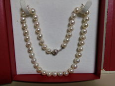 Akoya pearls necklace with brooch in white gold