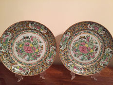Pair of Famille Rose Plates - China - ca. 1900