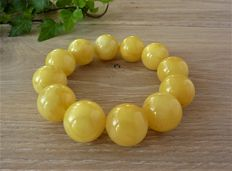 Baltic Amber bracelet in egg yolk, butter colour, 53.77 gr.