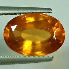 Grossular Garnet - 4.36 ct