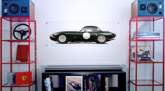 Painting on plexiglass - Jaguar E Alloy