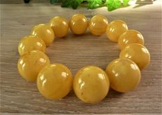 Baltic Amber bracelet in egg yolk, butter color  52 grams