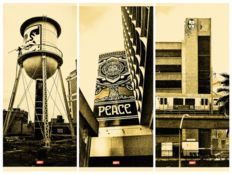 "Shepard Fairey (OBEY) - Covert To Overt -  ""Big Brother"", ""Icon Water Tower"" and ""Peace Tree"""
