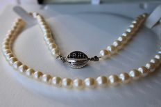 Japanese Akoya pearls necklace set with pearls and sea salt, 14 kt White gold buckle with Sapphires.