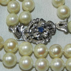 Pearl necklace made of Japanese akoya salt water pearls with diameter 7 mm 750/18 kt white gold clasp, with authentic sapphire