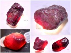 Lot of natural rough red ruby specimen - 306.65 cts. (5)