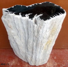 Mini side table from Stam of petrified wood - 44 x 21 x 10 cm - 15 kg