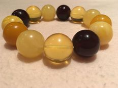 Multi-color Baltic amber beads bracelet, cherry, butterscotch, egg yolk and gold, 34,4 grams