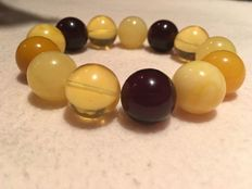 Multi-color Baltic amber beads bracelet, cherry, butterscotch, egg yolk and gold, 34.3 g