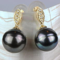 Earrings made of 14 kt yellow gold with peacock Tahitian pearls of 12.4 mm in diameter and 8 diamonds