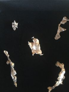 Gold Nugget Lot -  3,024 gm- 15,12ct (5)