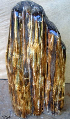 Fossil - Trunk of Petrified Wood - 33 cm  - 10 kg
