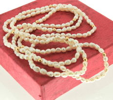 Pearl necklace with yellow gold spheres 14 kt