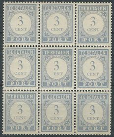 The Netherlands 1912/1920 – Postage Number value blue, with plate error – NVPH P48Aaf in block of 9