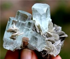 Aquamarine Var Beryl Crystals Cluster with Muscovite Mica - 50 x 38 x 23mm - 41gm