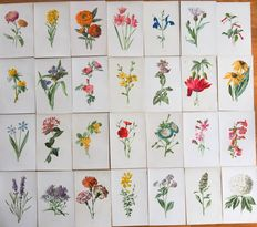 Collection flower prints with names-lythos 54 pieces.