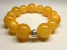Baltic Amber bracelet in egg yolk colour, 28 grams