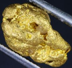 Large Gold Nugget - 12.42 x 8.03 x 7.61 mm - 13.89 ct, 2.778 g