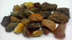 Natural Baltic amber, large, untreated 27-55 mm. 237,46 gr