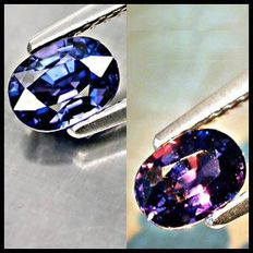 Color Change Sapphire - 1.01 ct - Purple
