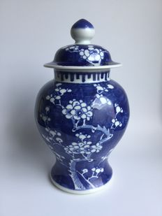 Large porcelain vase with lid with Prunus on broken ice - China - Approx. 1920 / 1930
