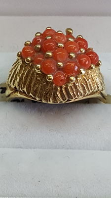 14 kt gold ring set with coral