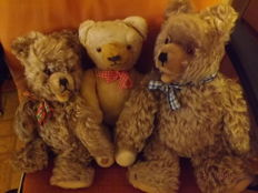 3 old teddy bears - probably Hermann (2 Zottybären) - Germany
