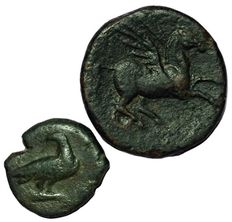 Greek Antiquity - Lot x 2 AE from Italy, Sicily - Akragas, Phintias Tyrant (287-279 BC) and Syracuse, Gelon (son of Hieron II, dying on 215 BC)