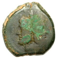 Roman Republic - AE As - C. Maianius - Prow - struck 153 BC - 30mm  17,66 gr
