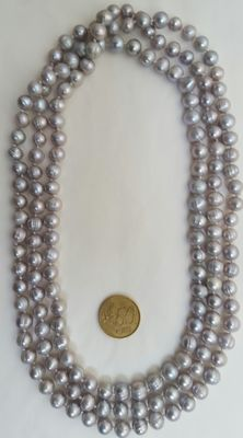 XL necklace composed of freshwater cultured light grey colour pearls.