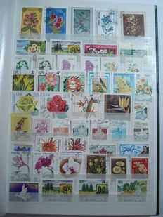 Thematic - 2500 Flowers of the world in 3 stockbooks
