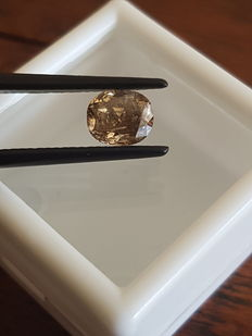 1.04 ct Cushion cut Fancy Vivid Brown. Not Enhanced( No Reserve Price )