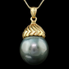 14kt gold pendant set with Tahitian black pearl 15 x 15.3 mm **no reserve price**