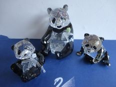 Swarovski - Annual Edition the Pandas - extra Cub.