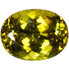 Apatite – Yellowish Green – 33.13 ct