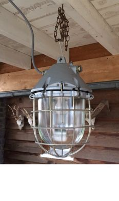 Robust industrial cage light