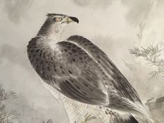 Scroll painting of a hawk - signed and stamped - Japan - 20th century.