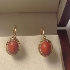 Gold 14 kt earrings with red coral